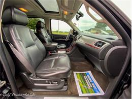 2009 Cadillac Escalade (CC-1413468) for sale in Lenoir City, Tennessee