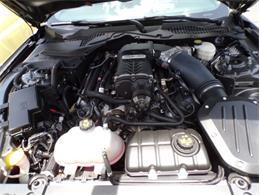 2016 Ford Mustang (Roush) (CC-1413739) for sale in Punta Gorda, Florida
