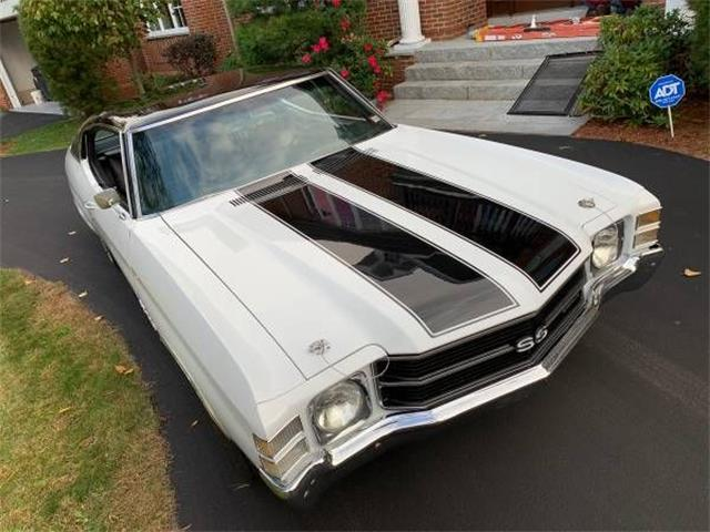 1971 Chevrolet Chevelle (CC-1413757) for sale in Cadillac, Michigan