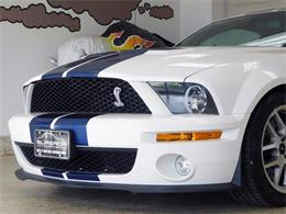 2008 Shelby GT500 (CC-1414156) for sale in Hamburg, New York
