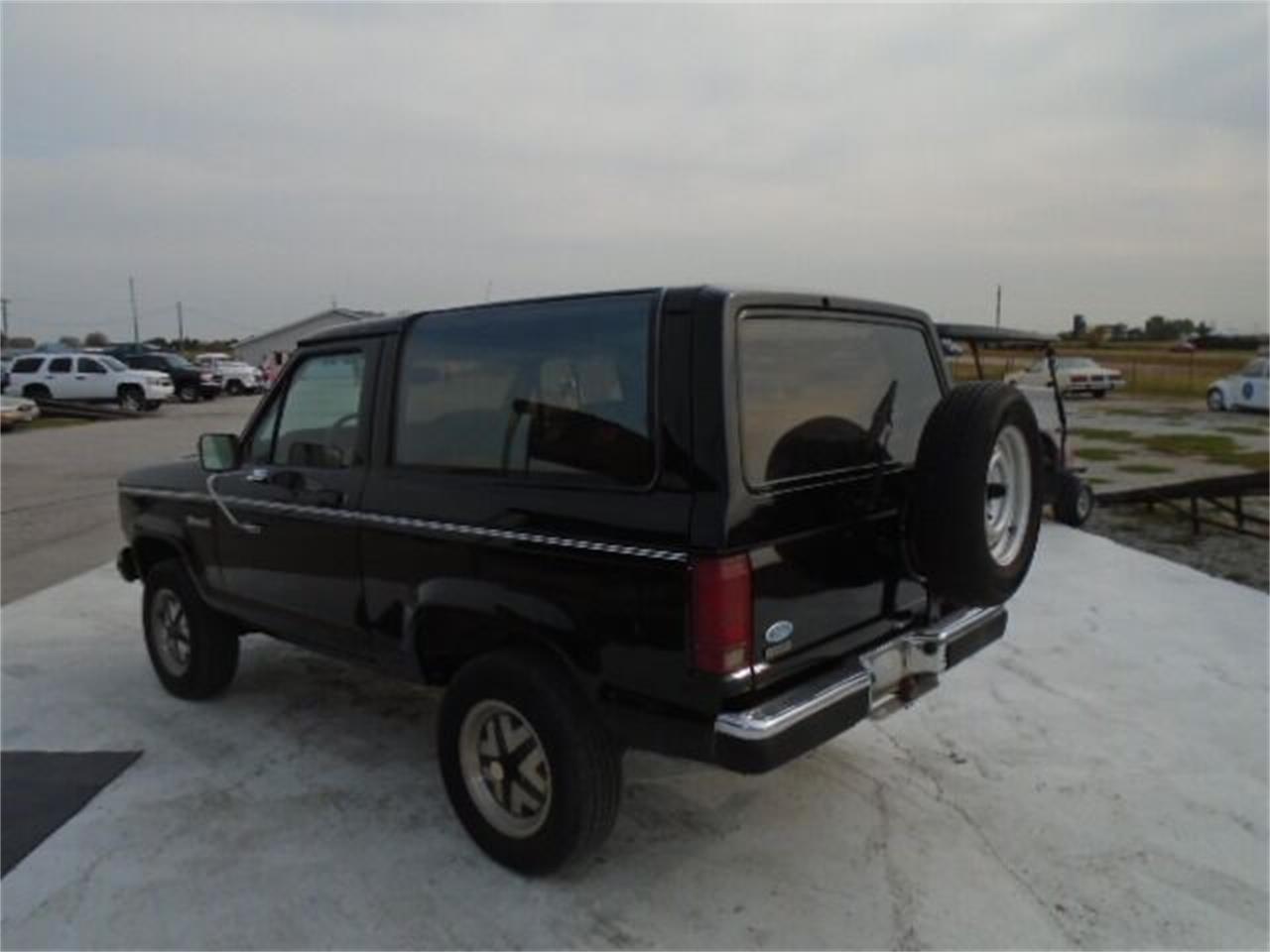 1987 Ford Bronco II (CC-1414309) for sale in Staunton, Illinois