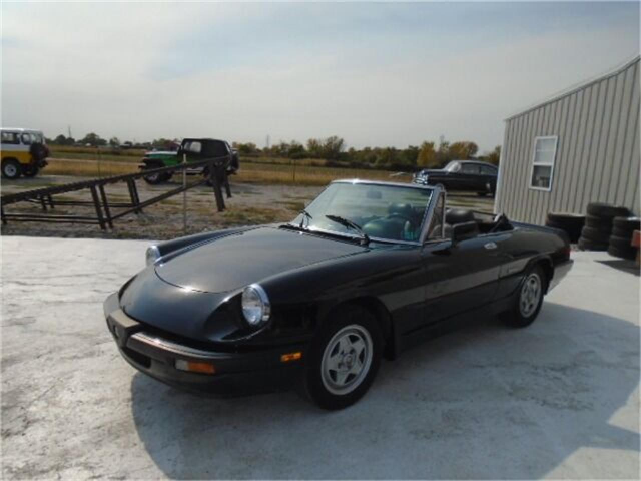 1988 Alfa Romeo Spider (CC-1414321) for sale in Staunton, Illinois