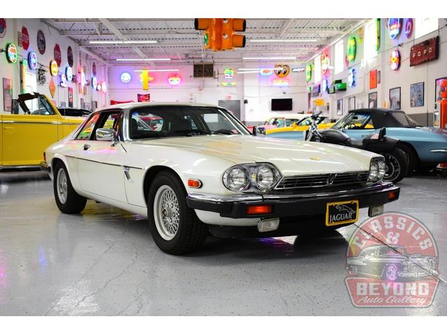 1989 Jaguar XJS (CC-1414459) for sale in Wayne, Michigan