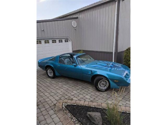 1979 Pontiac Firebird Trans Am (CC-1410454) for sale in Cadillac, Michigan