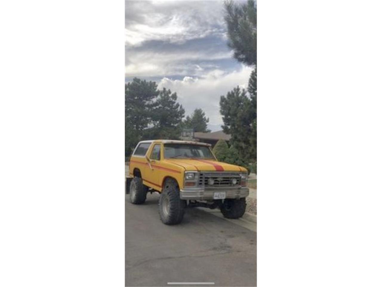 1983 Ford Bronco (CC-1415098) for sale in Cadillac, Michigan