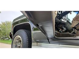 1979 Chevrolet Silverado (CC-1410568) for sale in Annandale, Minnesota