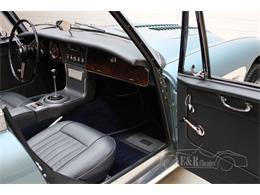 1965 Austin-Healey 3000 Mark III (CC-1415935) for sale in Waalwijk, Noord Brabant