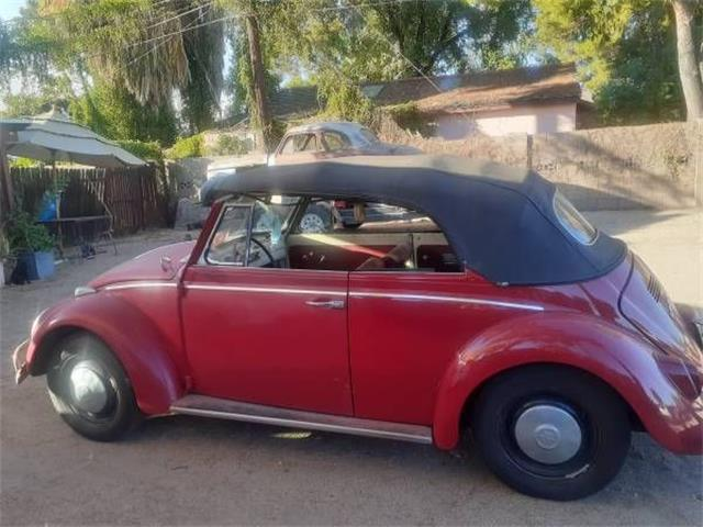 1966 Volkswagen Beetle (CC-1416371) for sale in Cadillac, Michigan