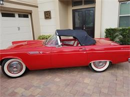 1955 Ford Thunderbird (CC-1416758) for sale in Orlando, Florida