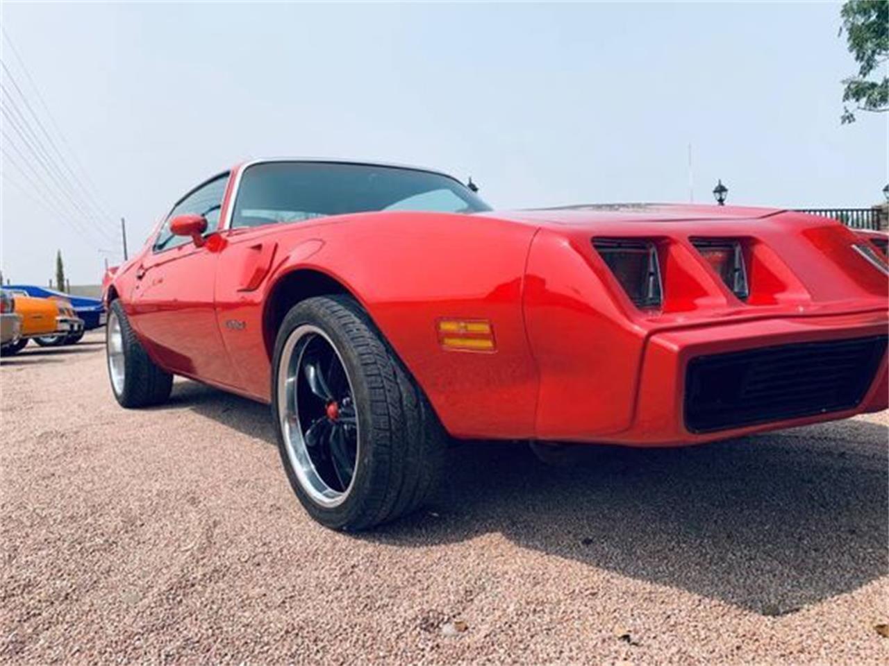 1979 Pontiac Firebird Trans Am (CC-1416913) for sale in Cadillac, Michigan