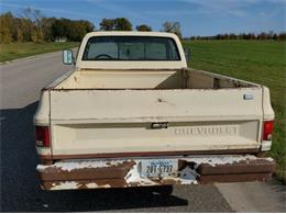 1981 Chevrolet C10 (CC-1416952) for sale in Cadillac, Michigan