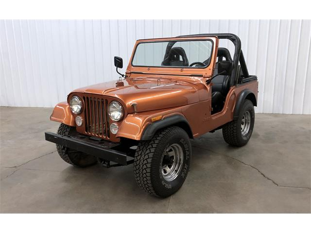 1981 Jeep CJ5 (CC-1417142) for sale in Maple Lake, Minnesota