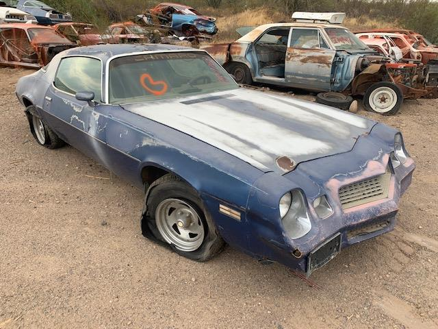 1981 Chevrolet Camaro (CC-1417223) for sale in Phoenix, Arizona