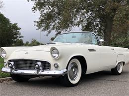 1955 Ford Thunderbird (CC-1417668) for sale in southampton, New York