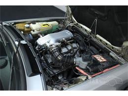 1984 Alfa Romeo GTV (CC-1417669) for sale in Waalwijk, Noord Brabant