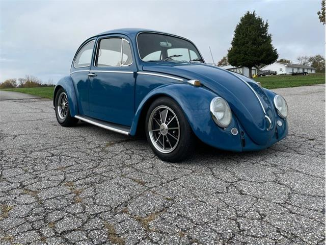 1965 Volkswagen Beetle (CC-1417814) for sale in Greensboro, North Carolina