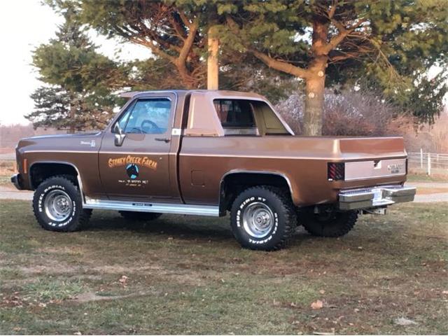 1979 Chevrolet Silverado (CC-1417861) for sale in Cadillac, Michigan