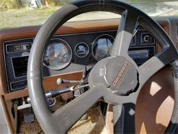 1976 Chevrolet Custom (CC-1418196) for sale in Cadillac, Michigan