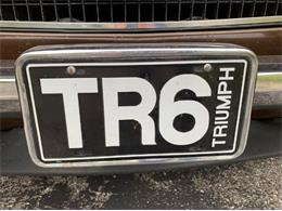 1975 Triumph TR6 (CC-1418199) for sale in Cadillac, Michigan