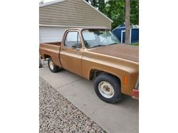 1979 GMC 1500 (CC-1418252) for sale in Cadillac, Michigan