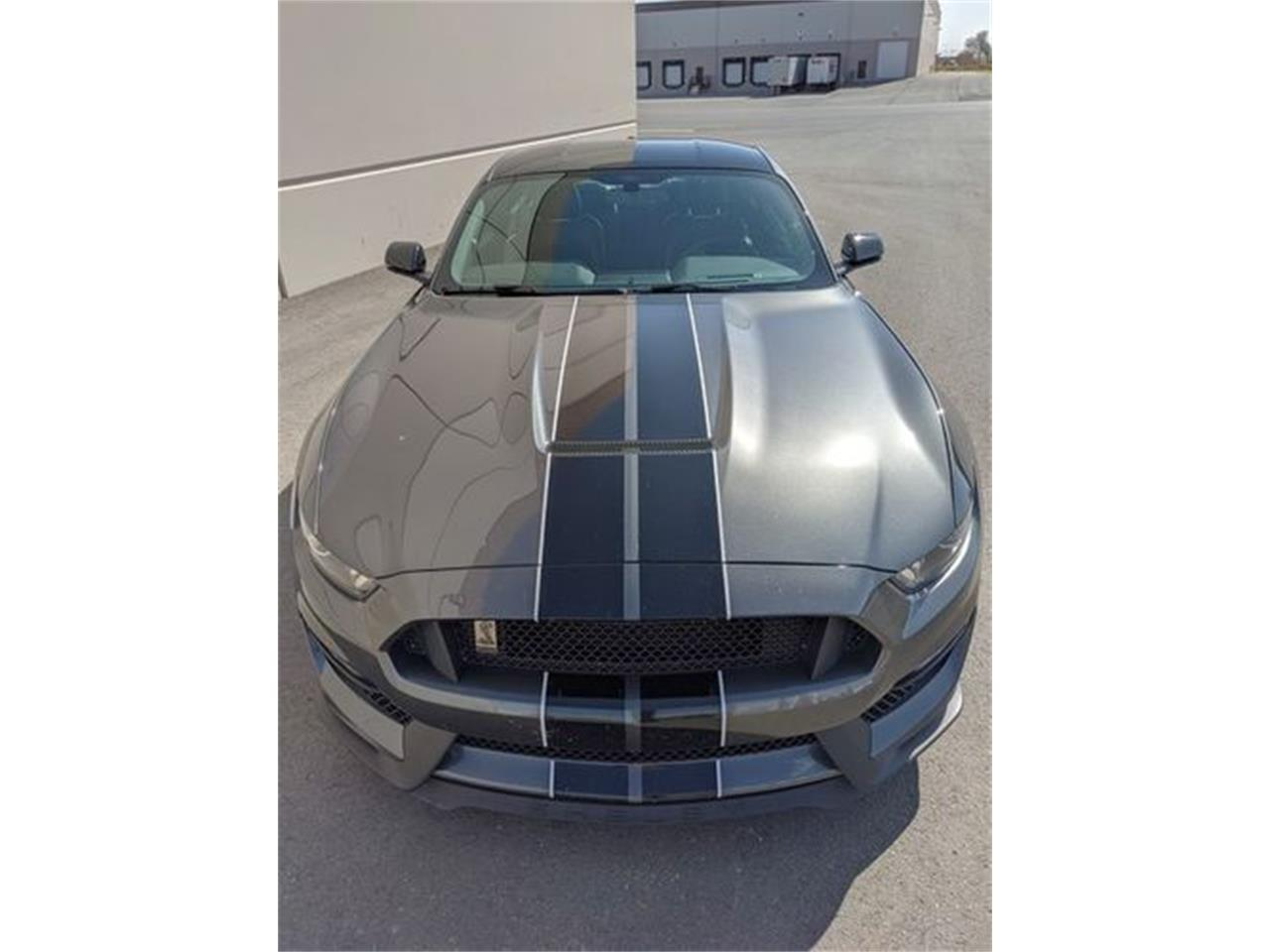 2016 Ford Mustang (CC-1418509) for sale in Cadillac, Michigan