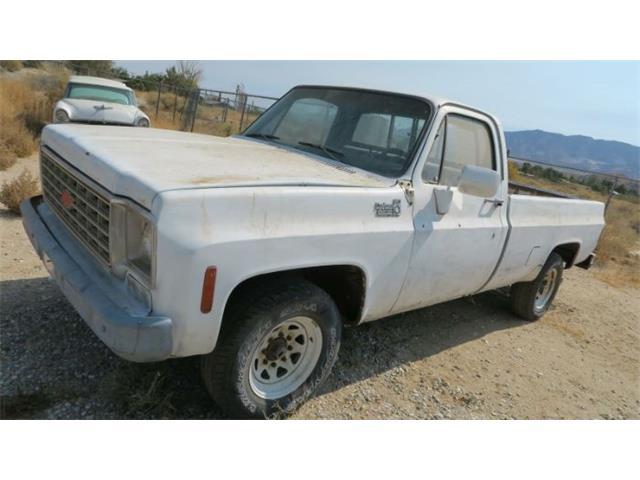 1976 Chevrolet C20 (CC-1418531) for sale in Cadillac, Michigan