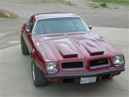 1974 Pontiac Firebird (CC-1418763) for sale in Cadillac, Michigan