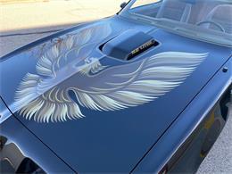 1979 Pontiac Firebird Trans Am (CC-1418804) for sale in Addison, Illinois