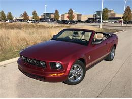 2007 Ford Mustang (CC-1418894) for sale in Williamsburg, Michigan