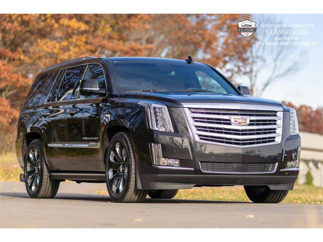 2019 Cadillac Escalade (CC-1418990) for sale in Milford, Michigan