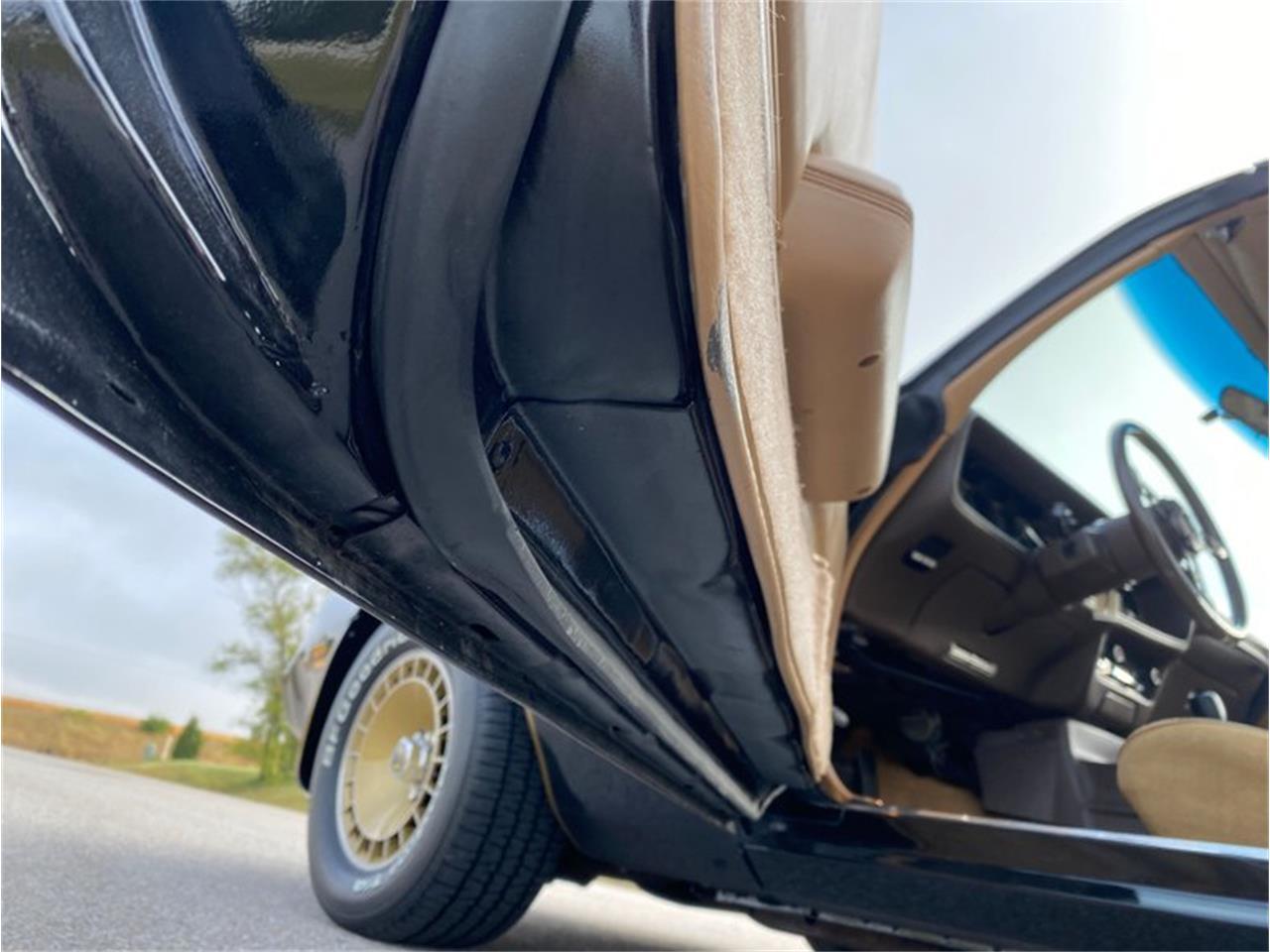 1981 Pontiac Firebird Trans Am (CC-1419370) for sale in Lincoln, Nebraska