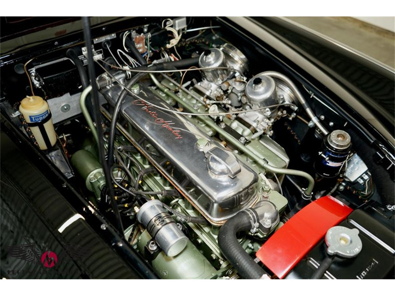 1964 Austin-Healey 3000 Mark III BJ8 (CC-1419391) for sale in Beverly, Massachusetts