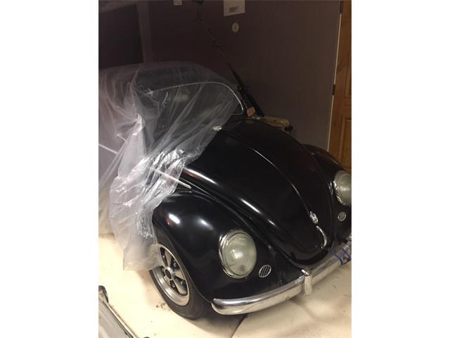 1963 Volkswagen Beetle (CC-1419408) for sale in Scottdale, Arizona