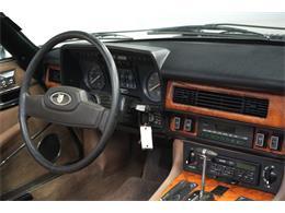 1988 Jaguar XJS (CC-1419528) for sale in Mesa, Arizona