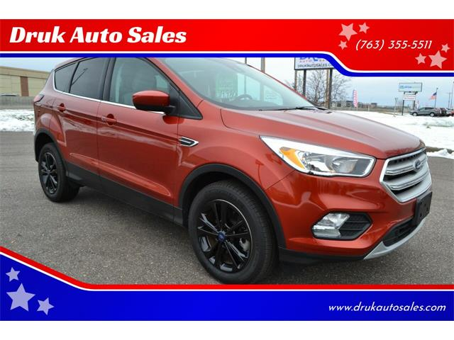 2019 Ford Escape (CC-1419661) for sale in Ramsey, Minnesota