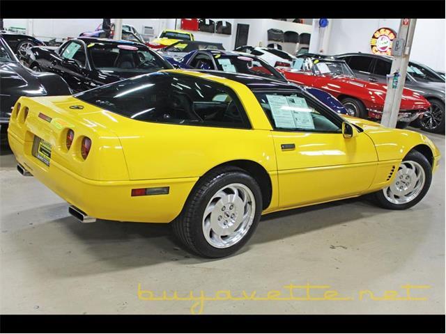 1995 Chevrolet Corvette (CC-1419681) for sale in Atlanta, Georgia