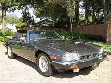 1989 Jaguar XJS (CC-1419896) for sale in Lakeland, Florida
