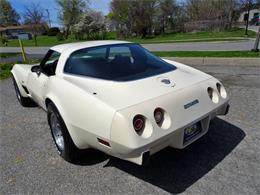1978 Chevrolet Corvette (CC-1419942) for sale in Hilton, New York