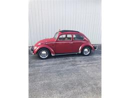 1966 Volkswagen Beetle (CC-1421053) for sale in Punta Gorda, Florida