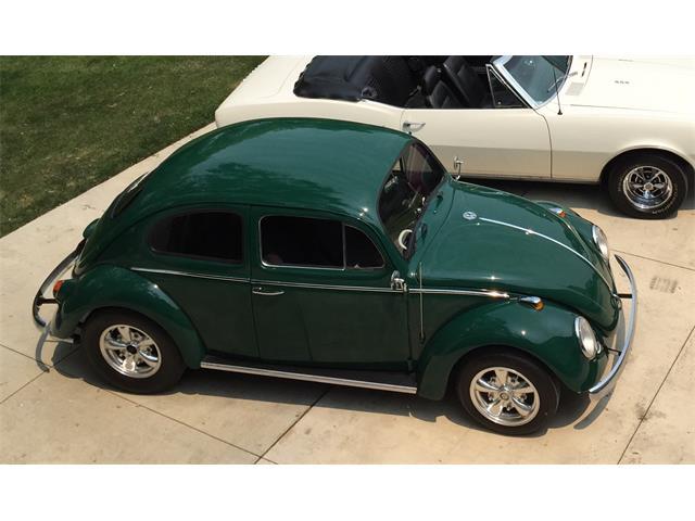 1964 Volkswagen Beetle (CC-1421482) for sale in Pleasant Prairie, Wisconsin