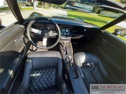 1979 Chevrolet Corvette (CC-1421928) for sale in Sarasota, Florida