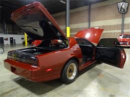 1988 Pontiac Firebird Trans Am (CC-1422339) for sale in O'Fallon, Illinois