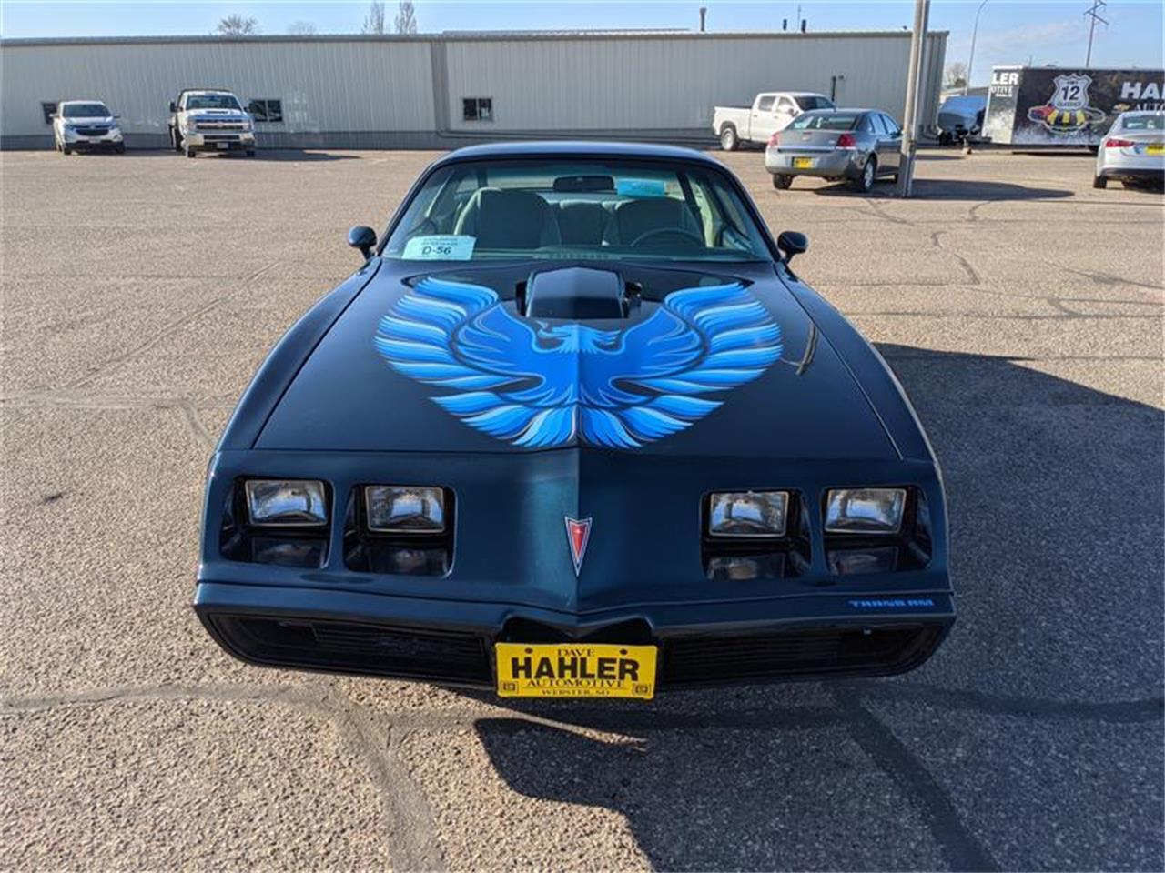 1979 Pontiac Firebird (CC-1422582) for sale in Webster, South Dakota