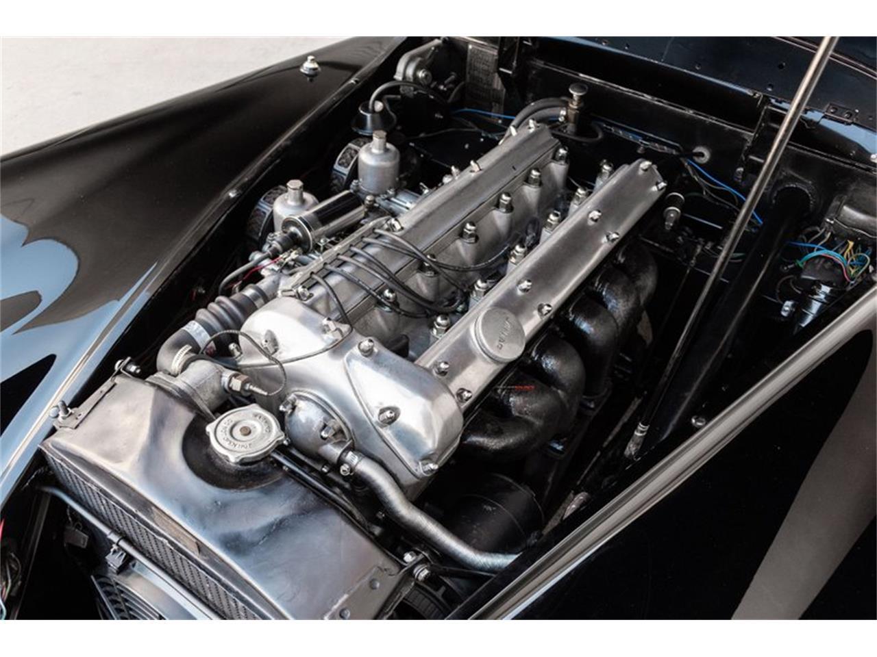 1954 Jaguar XK (CC-1420294) for sale in Houston, Texas