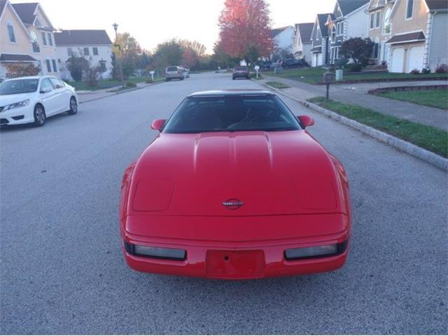 1994 Chevrolet Corvette (CC-1422955) for sale in Cadillac, Michigan