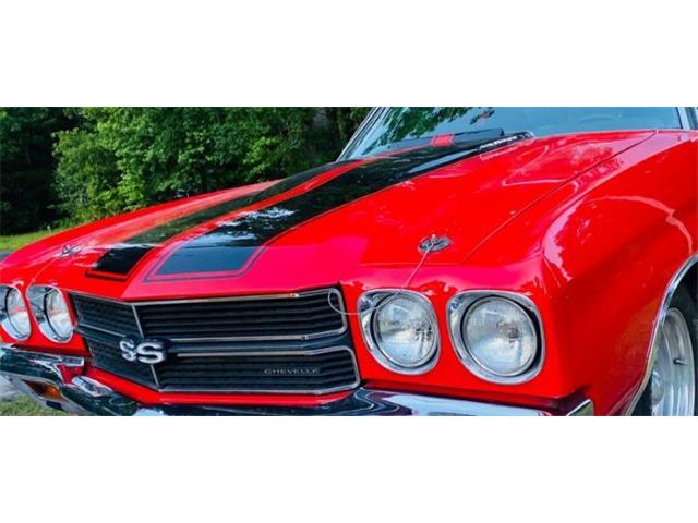 1970 Chevrolet Chevelle (CC-1423111) for sale in Cadillac, Michigan