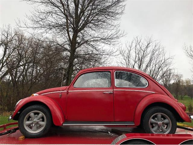 1966 Volkswagen Beetle (CC-1423130) for sale in Cadillac, Michigan