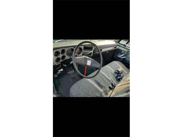 1982 Chevrolet C10 (CC-1423141) for sale in Cadillac, Michigan