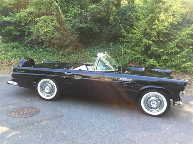 1956 Ford Thunderbird (CC-1423171) for sale in Cadillac, Michigan