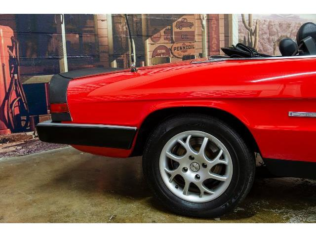 1986 Alfa Romeo Graduate (CC-1423231) for sale in Bristol, Pennsylvania